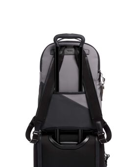 Webster Rucksack Spring Ltd Mens